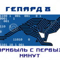 гепард 8